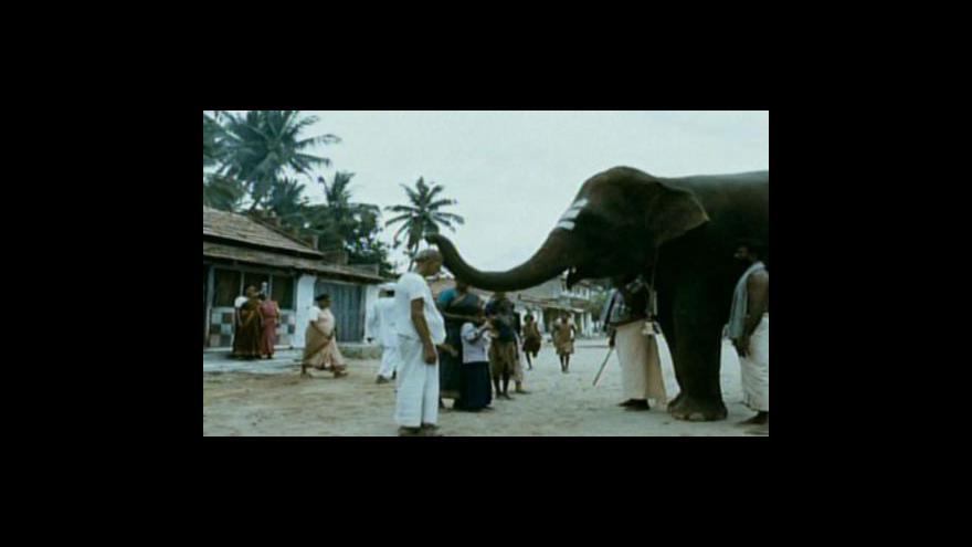 Video Bollywood v Česku