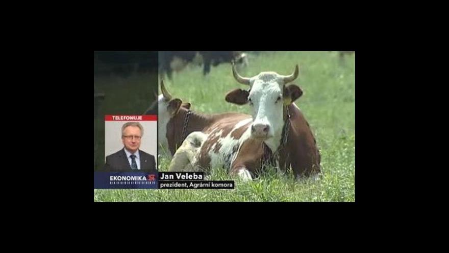 Video Komentář Jana Veleby a Petra Havla