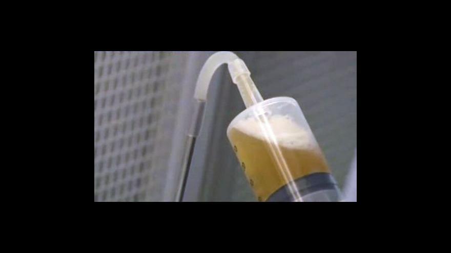 Video Finové zkoumají nejstarší pivo na světě