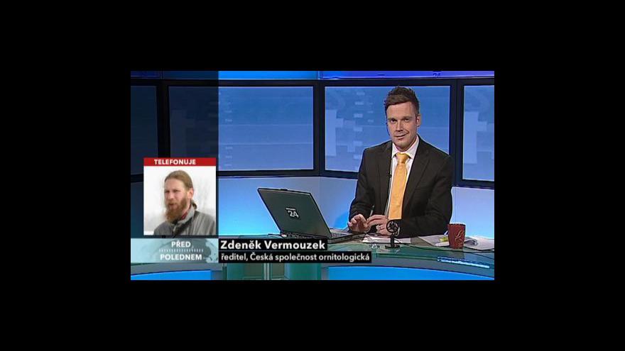 Video Rozhovor se Zdeňkem Vermouzkem