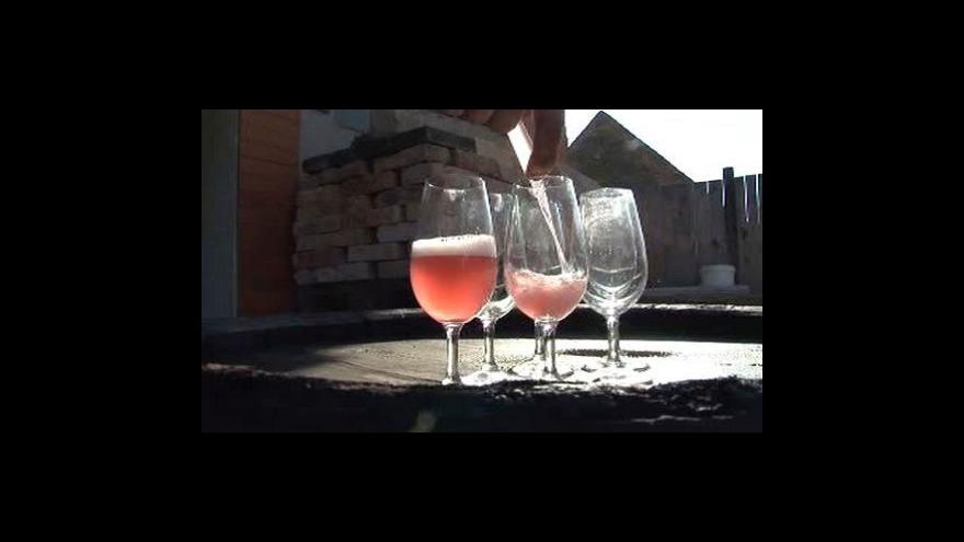 Video Svatomartinské 2010