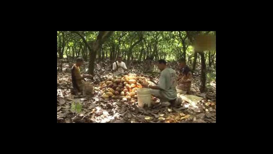 Video Stop nekvalitním kakaovým bobům
