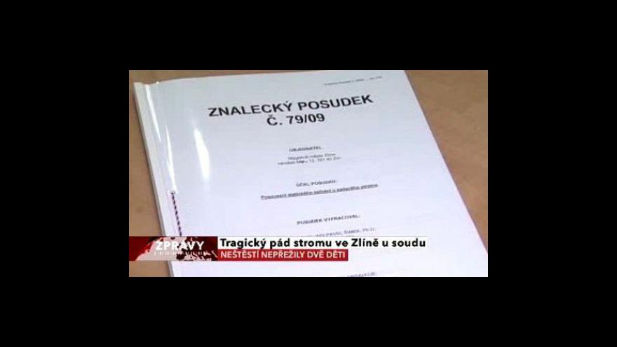 Video Tragický pád stromu ve Zlíně u soudu