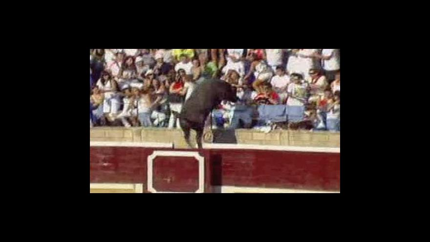 Video Bez komentáře: Býk zranil 40 lidí
