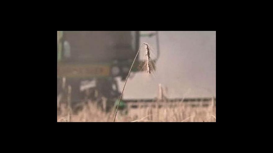 Video Ruský zákaz vývozu zrna