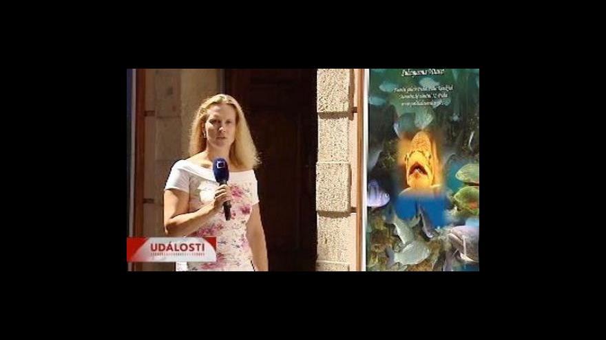 Video Reportáž Sabiny Janovicové