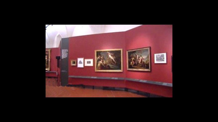 Video O výstavě informuje Petra Schubertová
