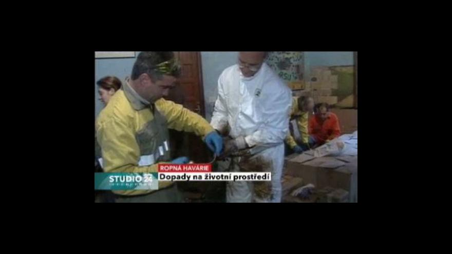 Video Studio ČT24 - Dopady ropné havárie na přírodu