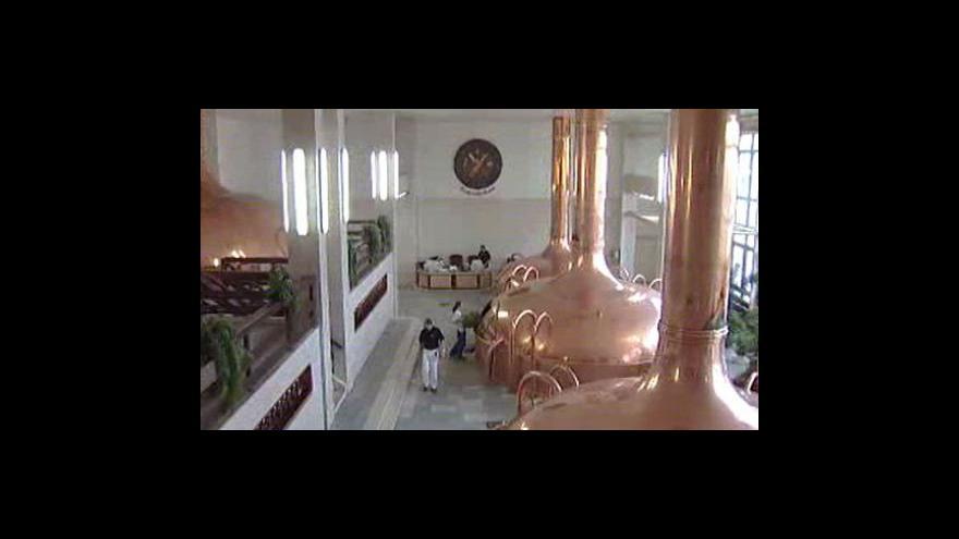 Video Pivovary povzbuzují poptávku jedenáctkami