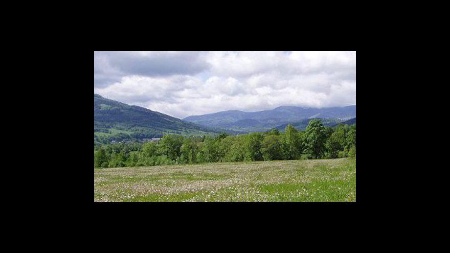 Video Vstup Moniky Bezuchové