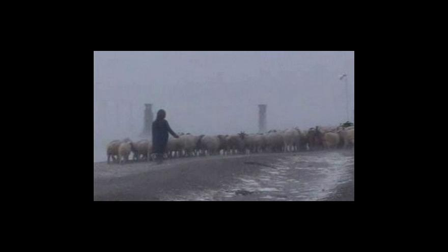 Video Mongolsko bojuje s následky mrazů