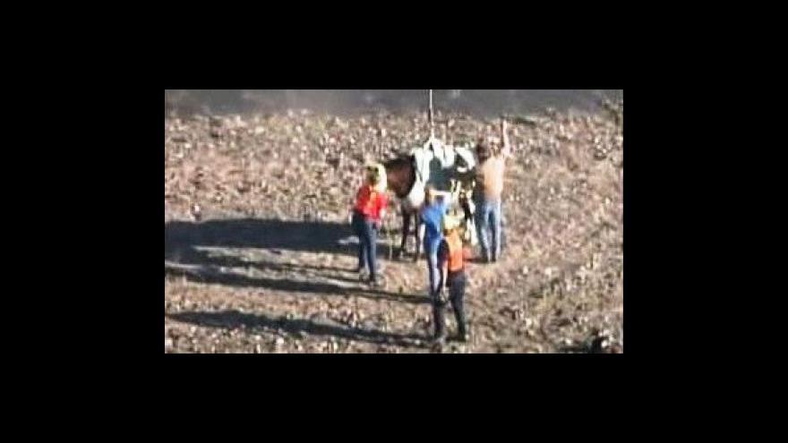 Video Létající kůň