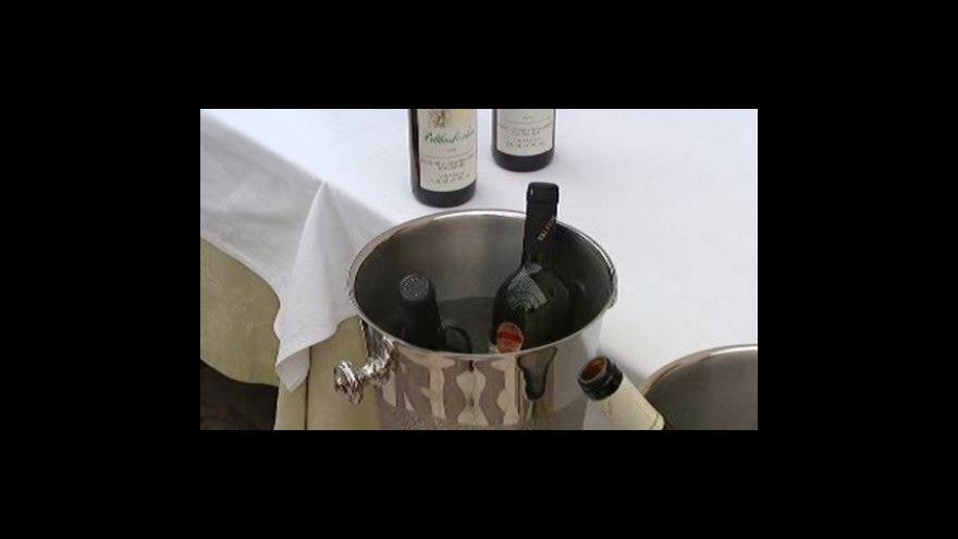 Video Vinařství roku 2009