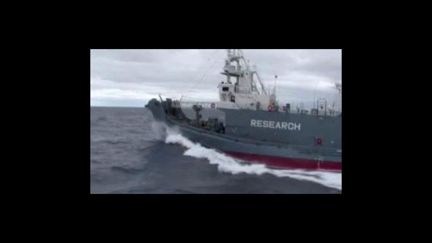 Video Srážka velrybářské lodi s ochránci