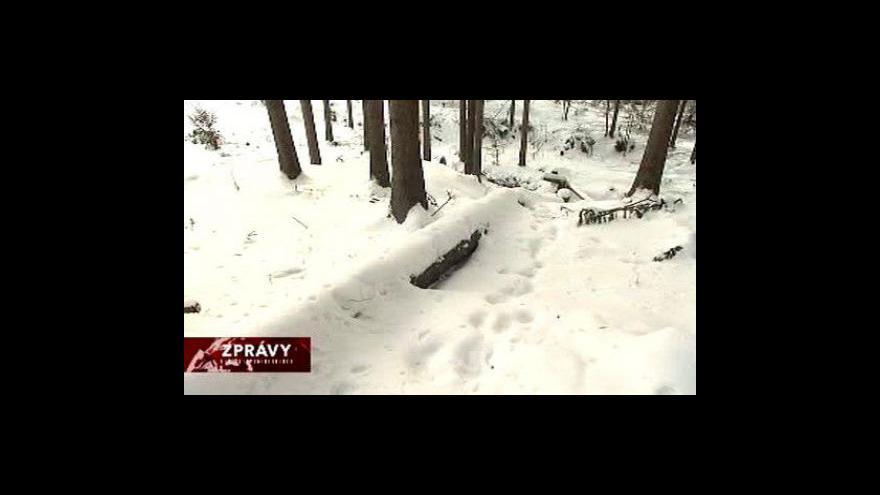 Video Situace v Beskydech