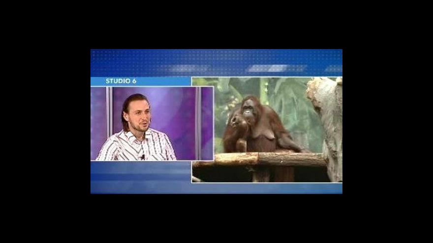 Video Rozhovor s Jiřím Malinou