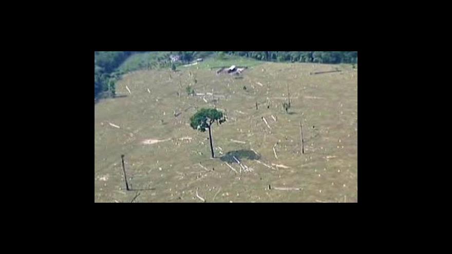 Video Pralesy se uzdravují