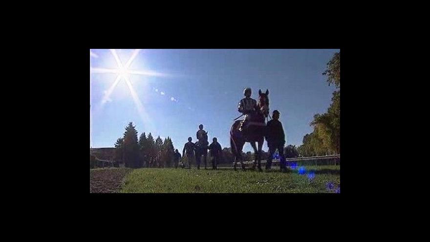 Video Startuje Velká pardubická