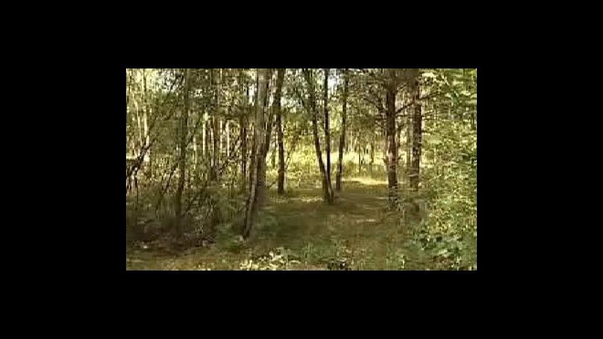 Video Reportáž Přemysla Šrámka