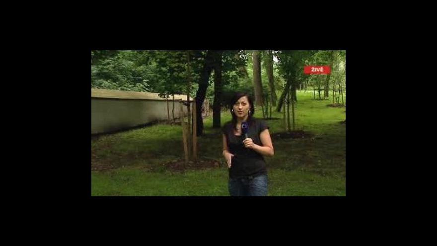 Video Vstup Lenky Drmotové