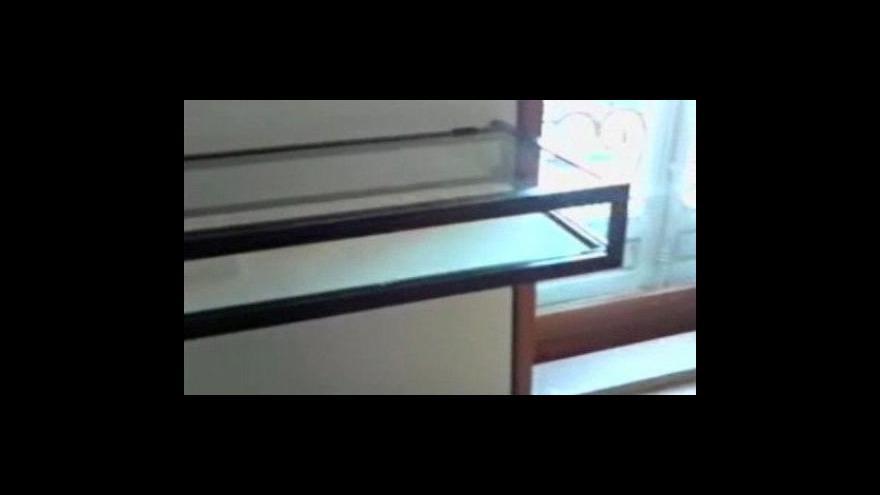 Video Záhadná krádež v Picassově muzeu