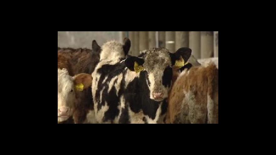 Video Zemědělci chystají další várku protestů