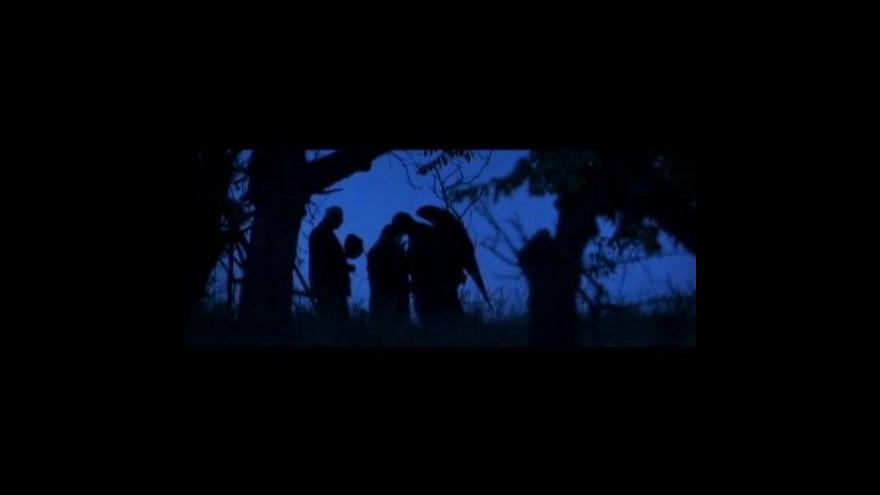 Video O filmu Ocas ještěrky v UvK