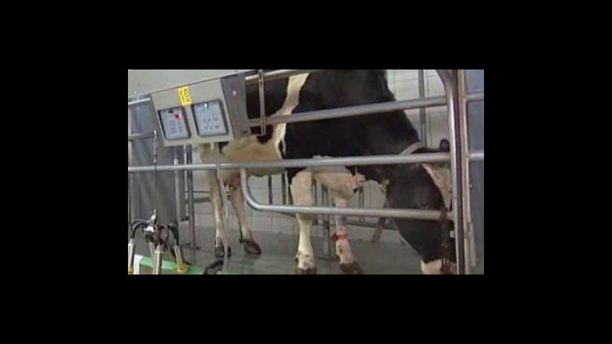Video Krize v mlékárenství
