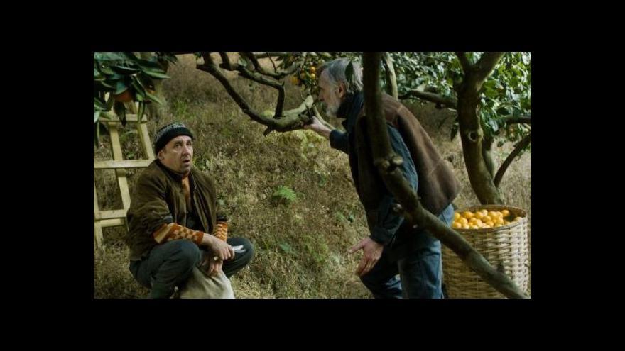 Video Mandarinky bojují o Oscara