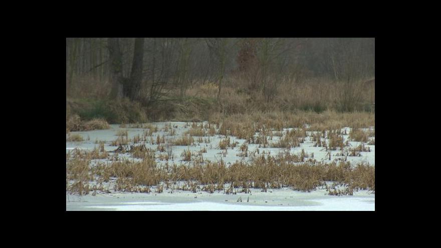 Video Ústavní soud řešil spor o škody na mlýně ve Šťáhlavech