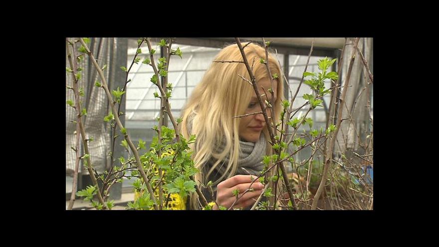Video Rostliny pro EXPO