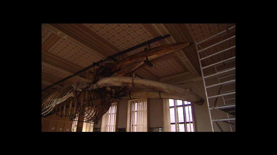 Video Kdy začne rekonstrukce Národního muzea?