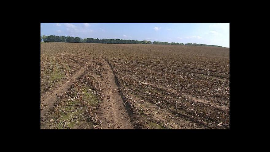 Video Stát chce výrazně zpřísnit podmínky prodeje zemědělské půdy