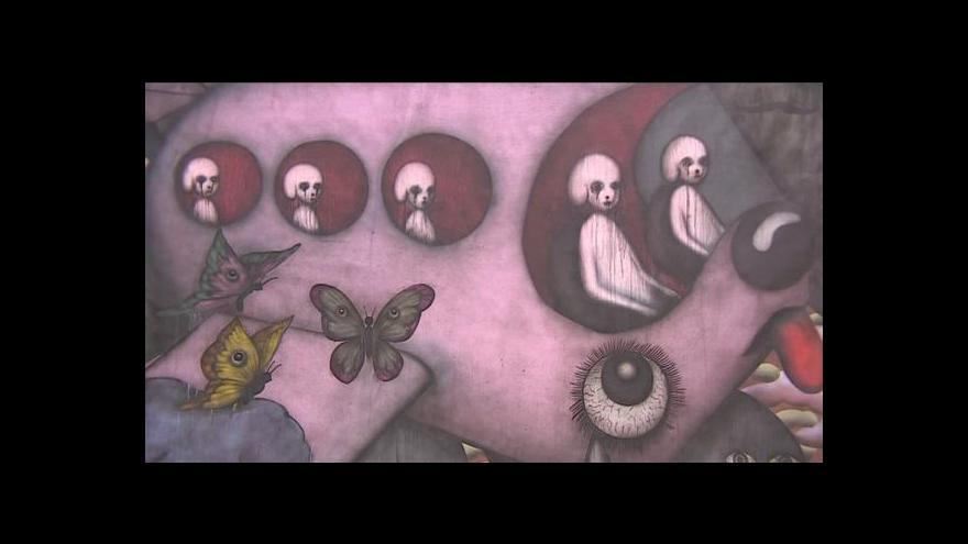 Video Česká malba generace 90. let