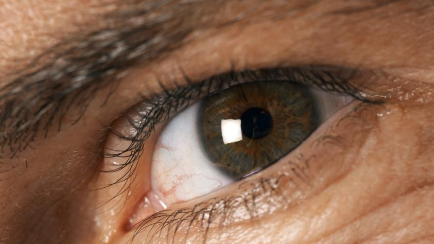 Video Studio 6 - Čeští vědci dokážou zachránit zrak