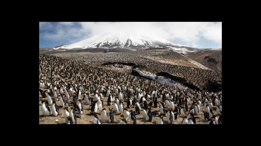 "Video ""Antarktida je fantastická, nejsou tam turisti"""
