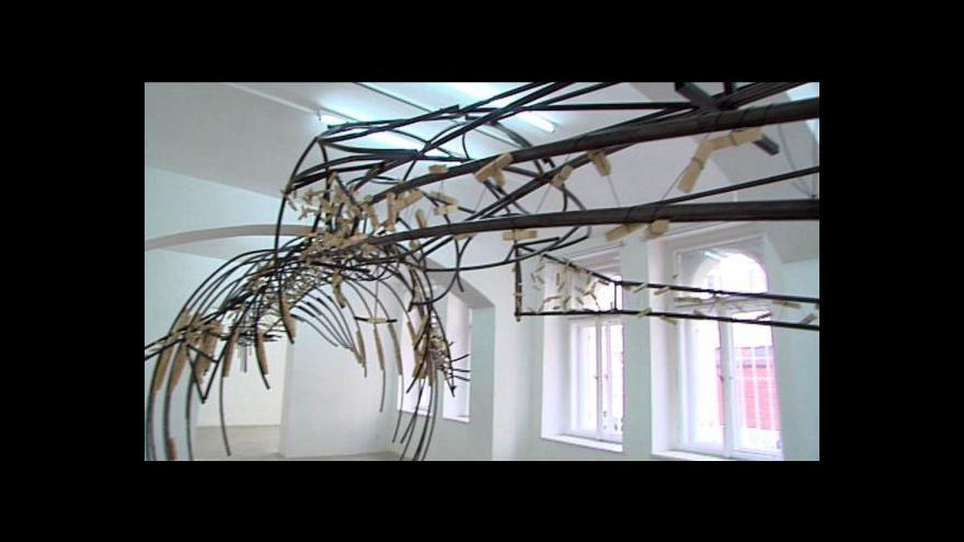 Video Kostru Langovy výstavy tvoří plejtvák obrovský