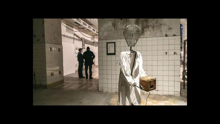 Video Dvouhlavý životopisec a Eva Koťátková zkoumají art brut