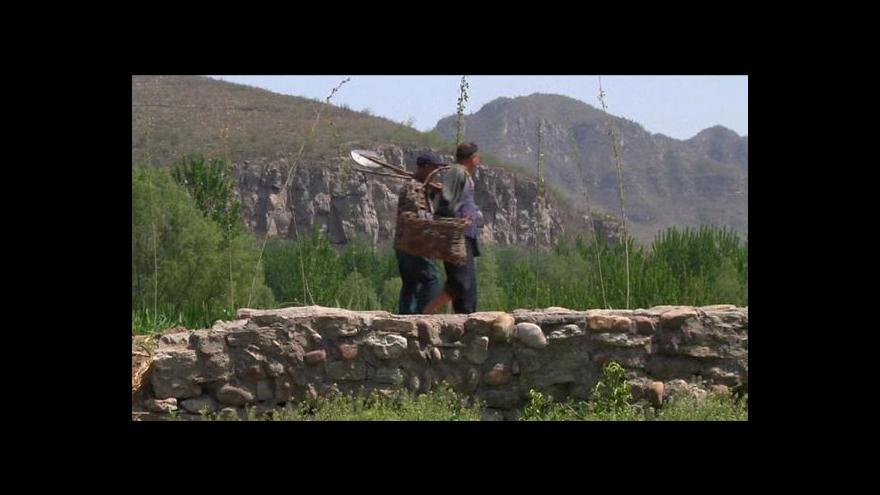 Video Dvojice hendikepovaných přes deset let sází stromy