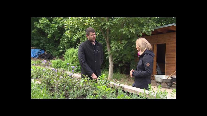 Video O pěstování bylinek hovoří manažer restaurace Martin Zvěřina