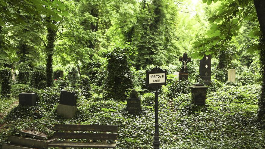 Video Hyde Park Civilizace - Umírání a smrt