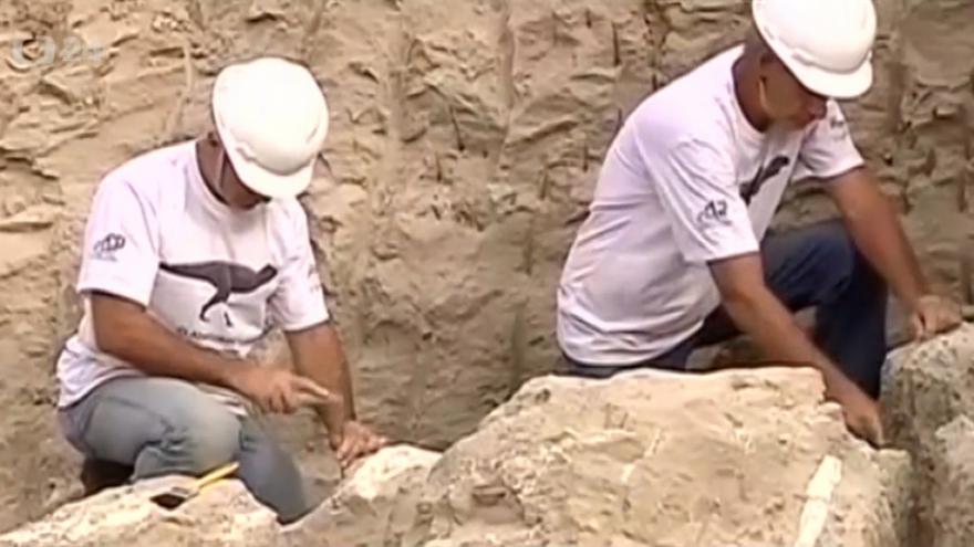 Video Nález dinosaura v Brazílii