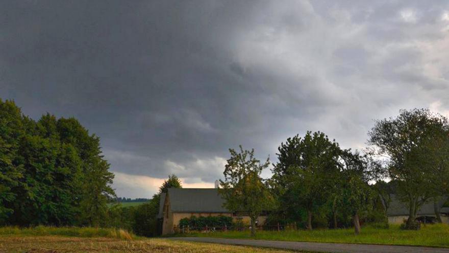 Video Borovice o počasí