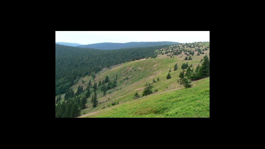 Video Panorama