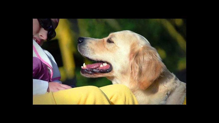 Video Události: Příspěvky na asistenční psy