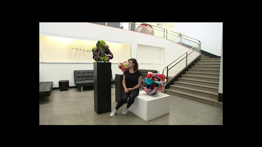 Video Komentovaná prohlídka Chemistry Gallery
