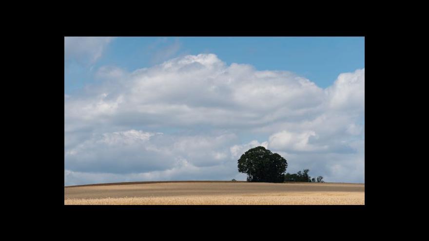 Video Počasí: V pátek tropy, v sobotu déšť, od neděle příjemně