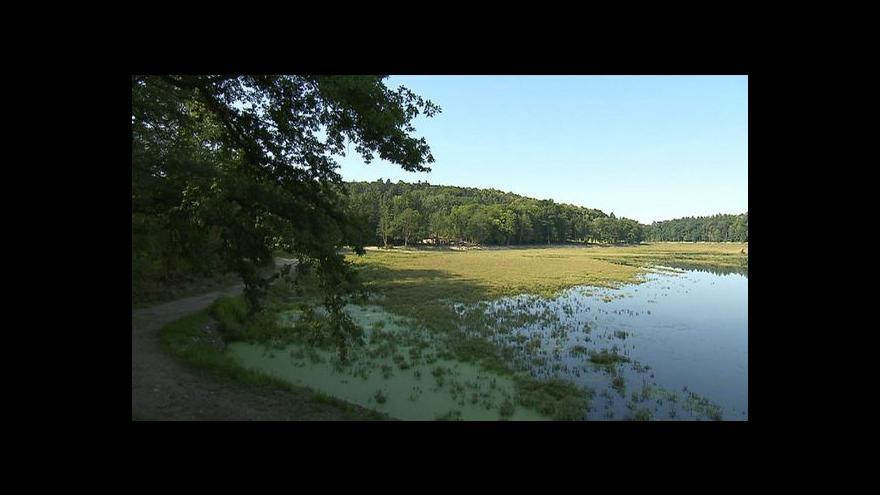 Video Na Konopišťský rybník se vrátí i lodičky