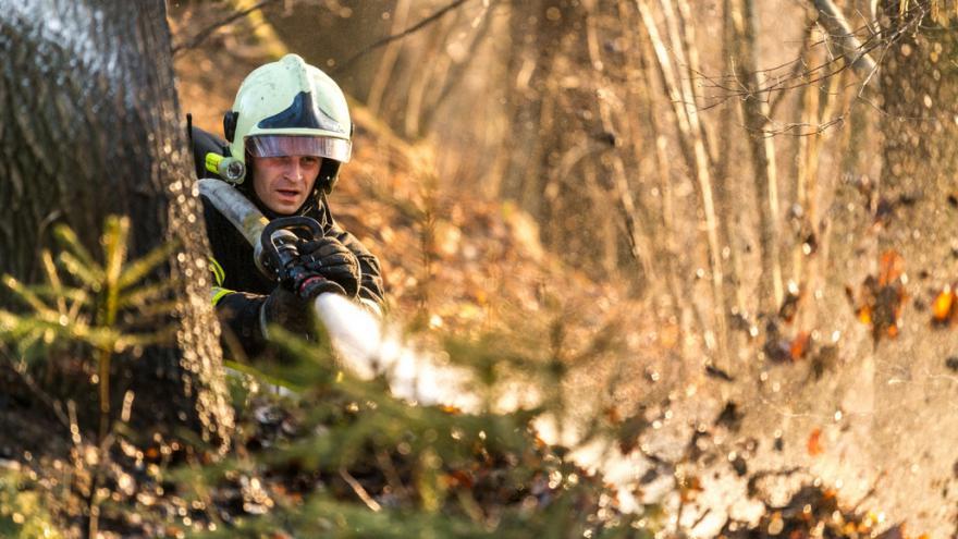 Video Hasiči stále častěji řeší požáry v chráněných oblastech