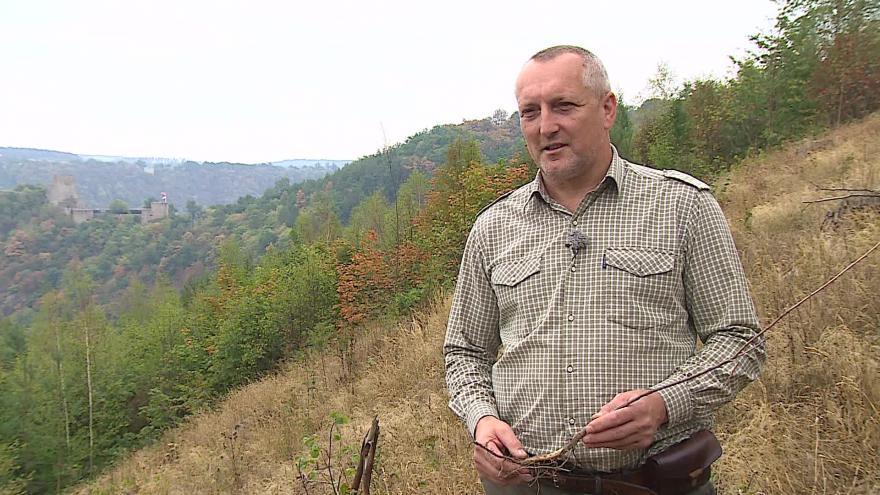 Video O mladých stromcích hovoří lesní správce Václav Lukášek